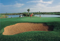 Palmeraie Golf Club